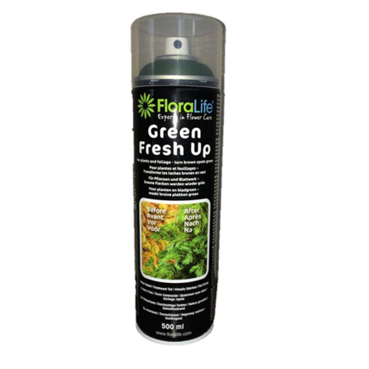 1501 Floralife Green Fresh Up Dark Green 500ml - 1 No