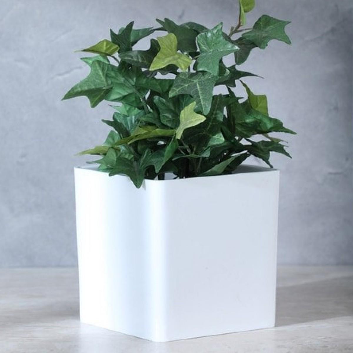 Cube White 10x10x10cm Acrylic Vase - 1 No