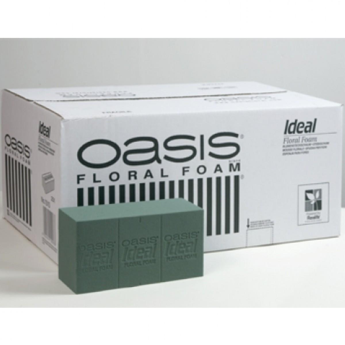 Ideal Brick (20 Nos) Oasis Floral Foam