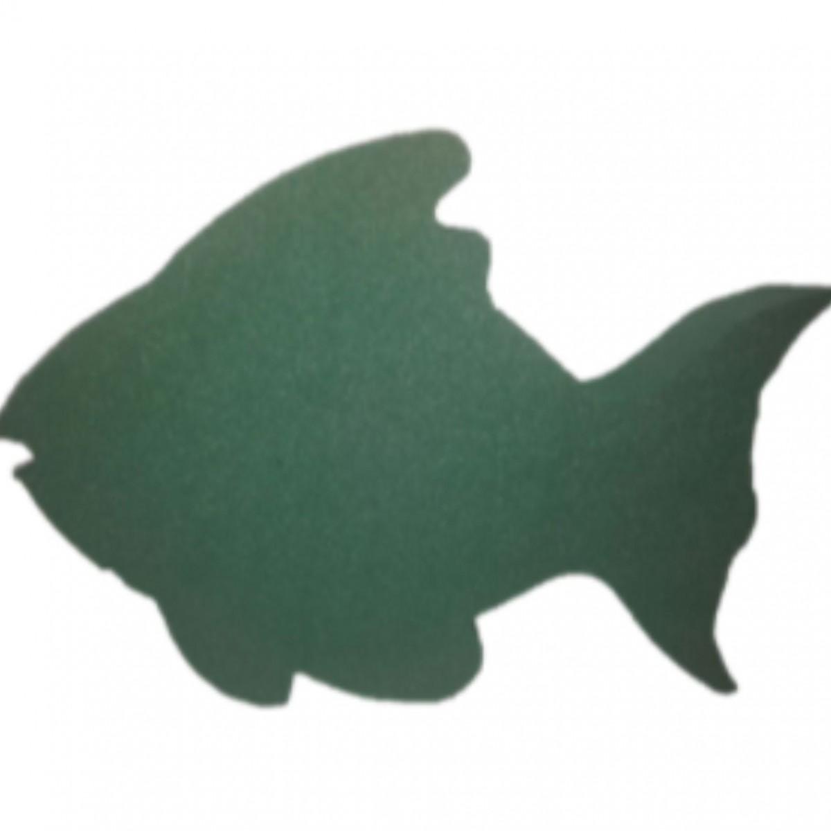 Fish 24