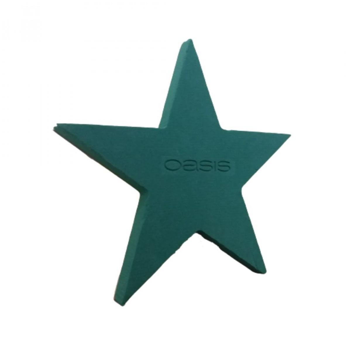 Five Point Star 12