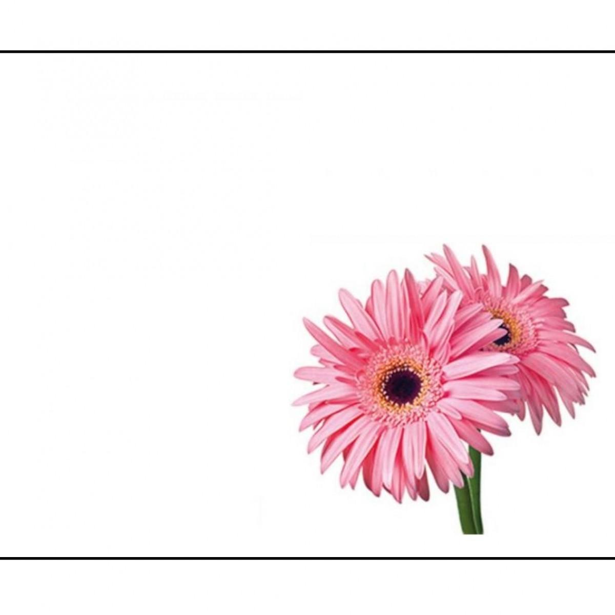 4514 Gerberas Pink 9x6cm 50x1 Cards